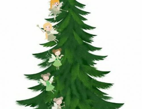 FREE Christmas Tree From Hayes Garden World
